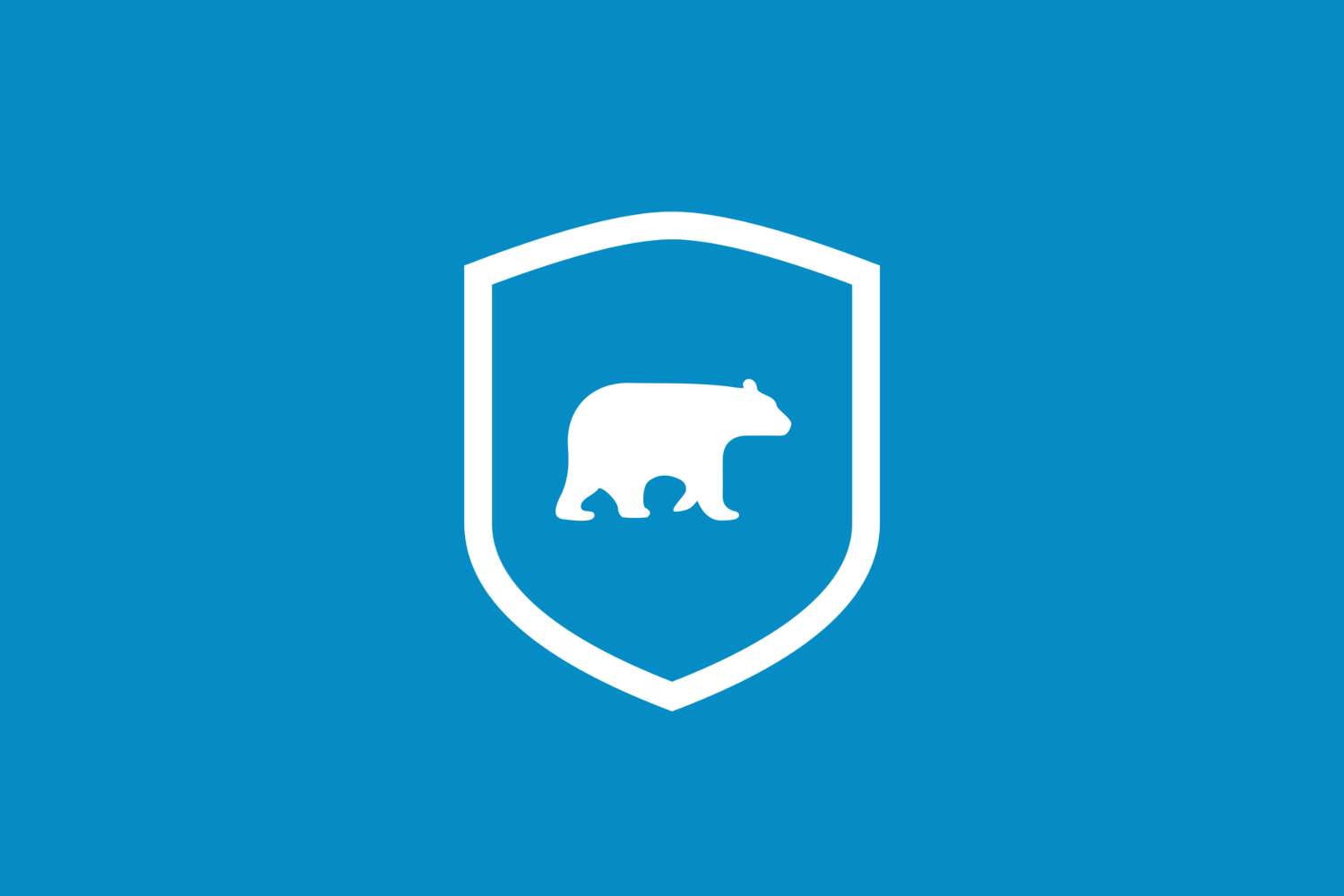 5 reasons why Bear CMS is more secure than your average CMS